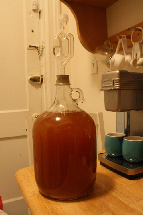 spiced hydromel mead