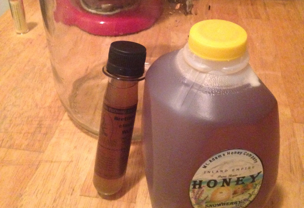 The Last 3 Mead Yeast Strains You'll Ever Need