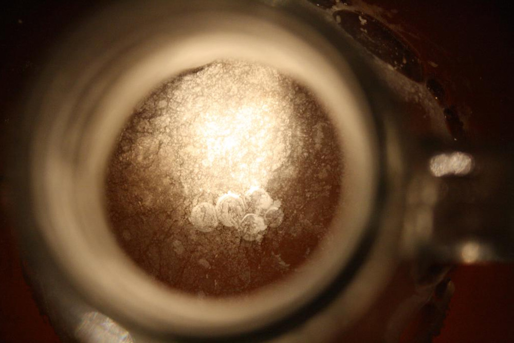 lambic mead pellicle