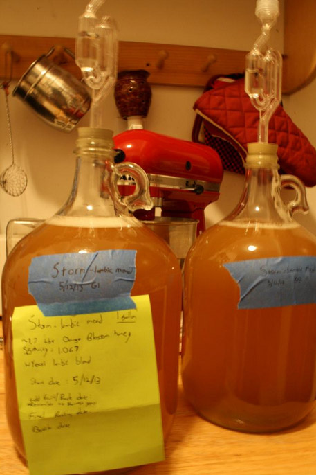 lambic mead in carboys