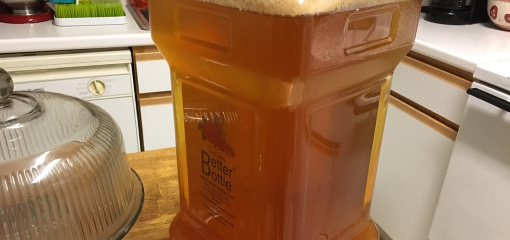 golden rye sour beer in carboy
